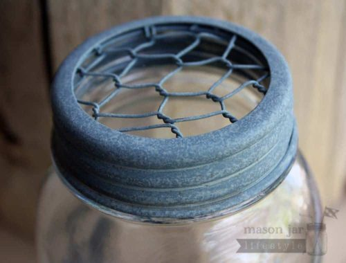 Galvanized metal chicken wire frog lid for regular mouth Mason jars