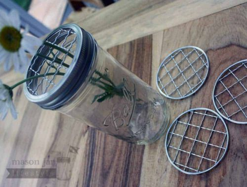 Shiny crinkly frog lids for wide mouth Mason jars 4 pack