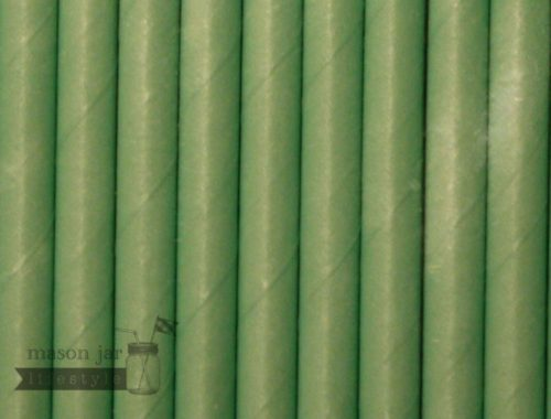 Green #12 Solid Biodegradable Paper Party Straw