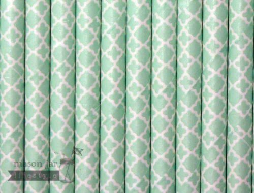 Green #13 Damask Biodegradable Paper Party Straw
