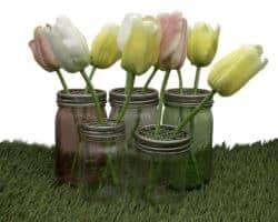 mason-jar-lifestyle-frog-flower-grid-organizer-pen-lid-insert-regular-wide-mouth-mason-jars-pint-quart-tulips