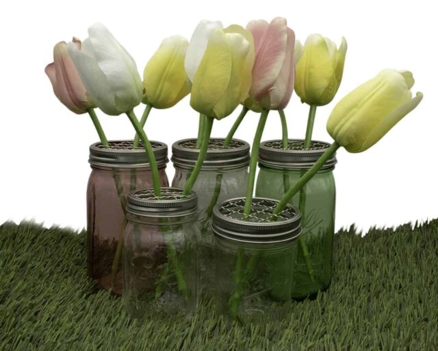 mason-jar-lifestyle-frog-flower-grid-organizer-pen-lid-insert-regular-wide-mouth-mason-jars-pint-quart-tulips