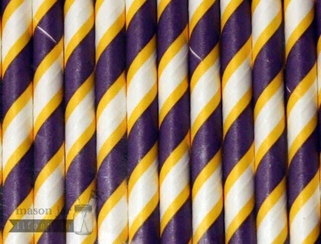 Multi Color #17 Purple Yellow Vikings Candy Striped Biodegradable Paper Party Straw