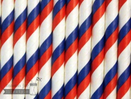 Multi Color #3 Red Blue Candy Striped Biodegradable Paper Party Straw