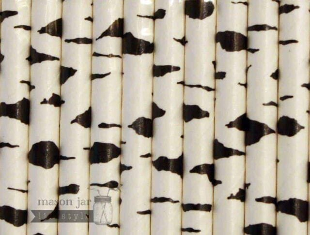 Multi Color #9 Black White Birch Tree Biodegradable Paper Party Straw