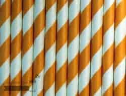 Orange #1 Candy Striped Biodegradable Paper Party Straw