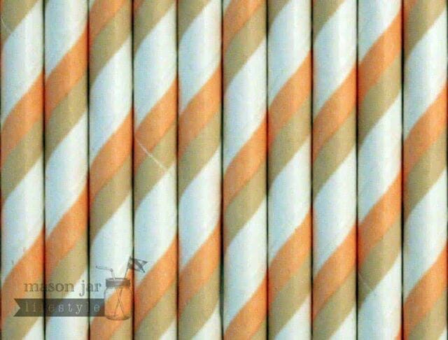 Orange #2 Candy Striped Biodegradable Paper Party Straw