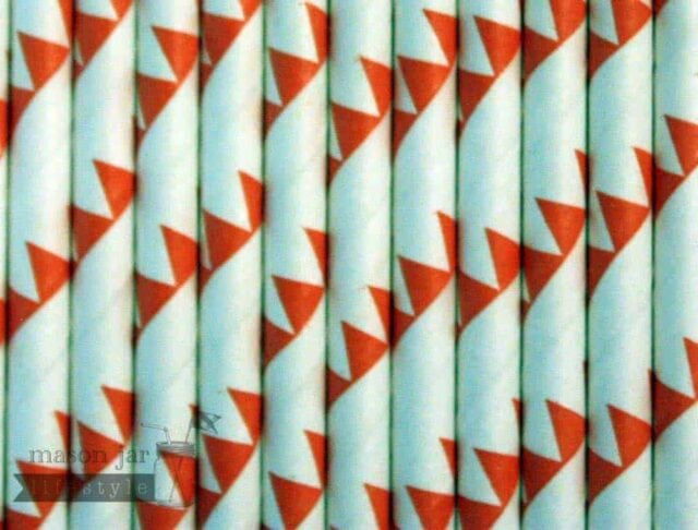 Orange #3 Flags Biodegradable Paper Party Straw