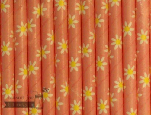 Pink #7 Daisy Printed Biodegradable Paper Party Straw