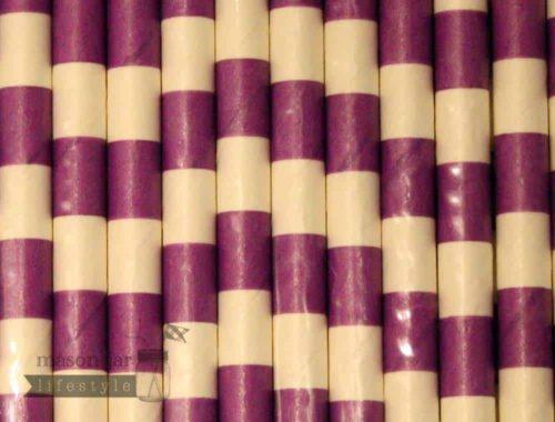 Purple #5 Horizontal Stripes Biodegradable Paper Party Straw