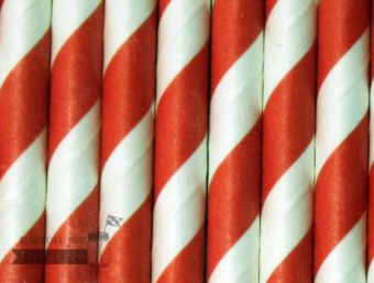 Red #2 Candy Striped Biodegradable Paper Party Straw
