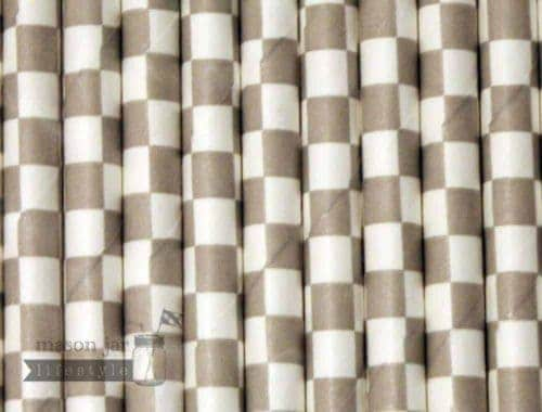 Silver #2 Checkered Biodegradable Paper Party Straw