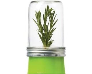 Jarware herb saver for regular mouth Mason jars