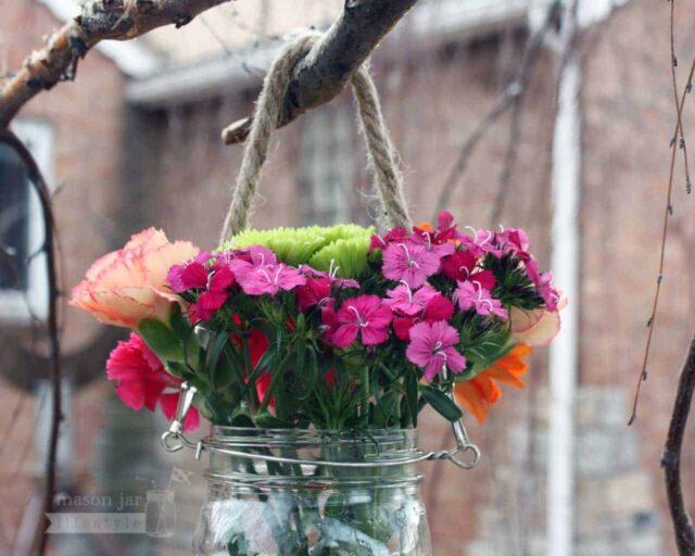 Thin rope handle on wide mouth quart Mason jar with flowers hanging on birch tree