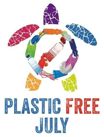 Turtle Plastic Free July
