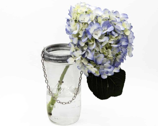 mason-jar-lifestyle-galvanized-metal-band-ring-with-chain-hanging-handle-hanger-wide-mouth-4oz-ball-mason-jar-flowers