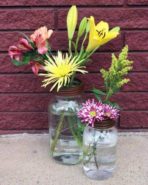 Rust / brown frog / flower organizer lids with chicken wire for regular and wide mouth Mason jars with flowers