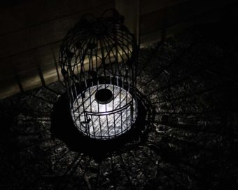 Mason jar solar light single LED in bird cage