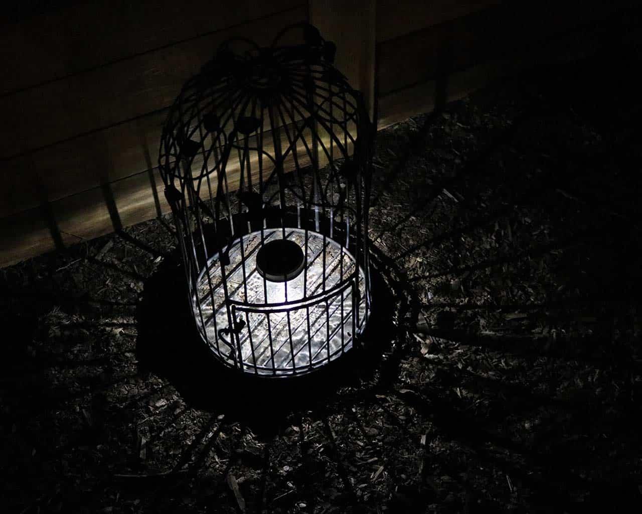 Mason jar solar light single LED in bird cage