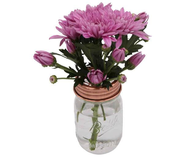 mason-jar-lifestyle-shiny-copper-grid-square-frog-flower-lid-regular-mouth-mason-jars-ball-pint