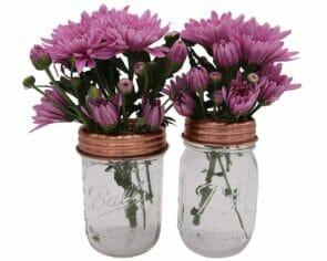 mason-jar-lifestyle-shiny-copper-grid-square-frog-flower-lid-regular-wide-mouth-mason-jars-ball-pint