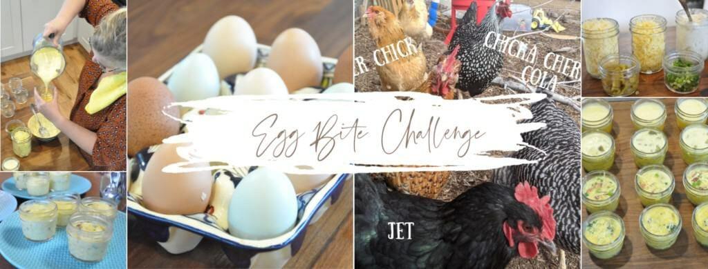 Mason Jar Egg Bite Challenge