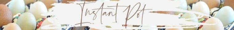 instant pot banner